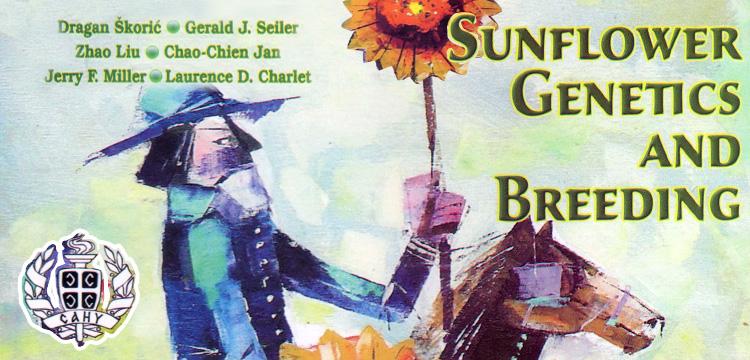 sunflower genetics and breeding